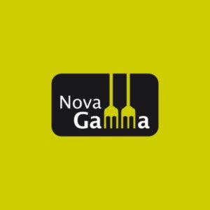Novagamma – beewing portfoli – Webs a mida – Botigues online – Màrketing online offline – Programació – Hosting- Dominis – Imatge corporativa – Branding – Naming