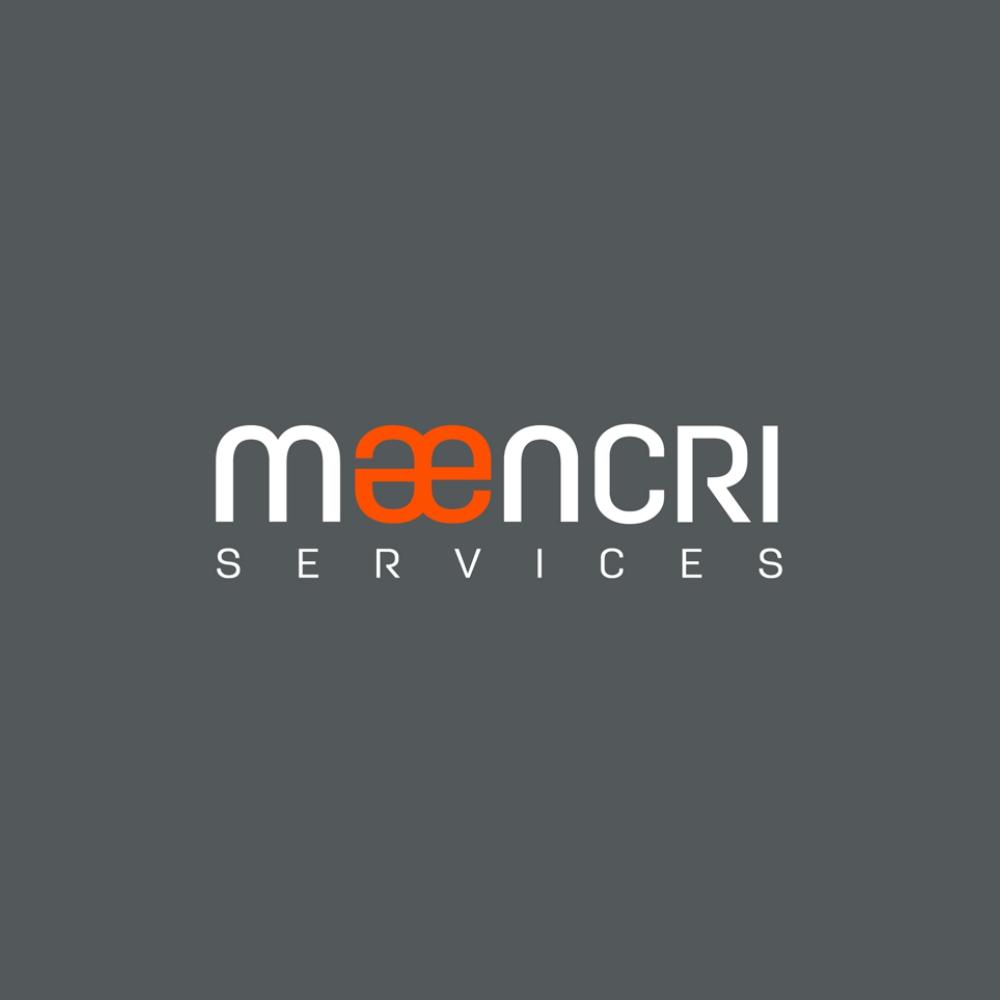 Beewing portfoli – Maencri